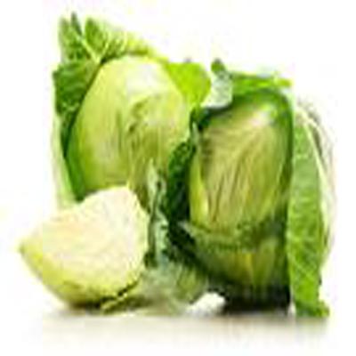 Cabbage- বাঁধাকপি