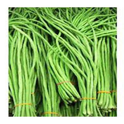 Long bean- বরবটি