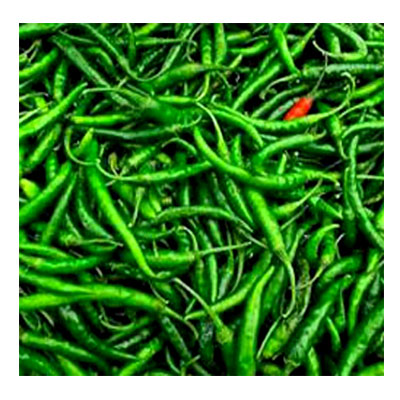 Green Chilli- কাঁচা মরিচ