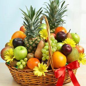 Fruits-Fal-ফল