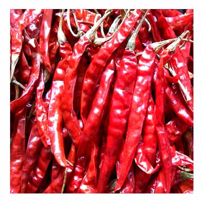 NATURAL-HOT-Dry-Red-Chilli