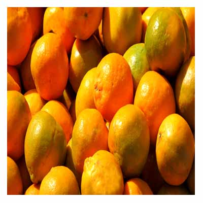 Nagpuri_orange