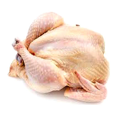 Poultry-Chicken-Clean